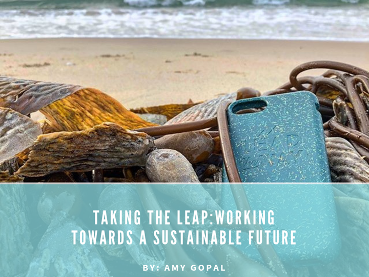 Taking The Leap - Working Towards A Sustainable Future